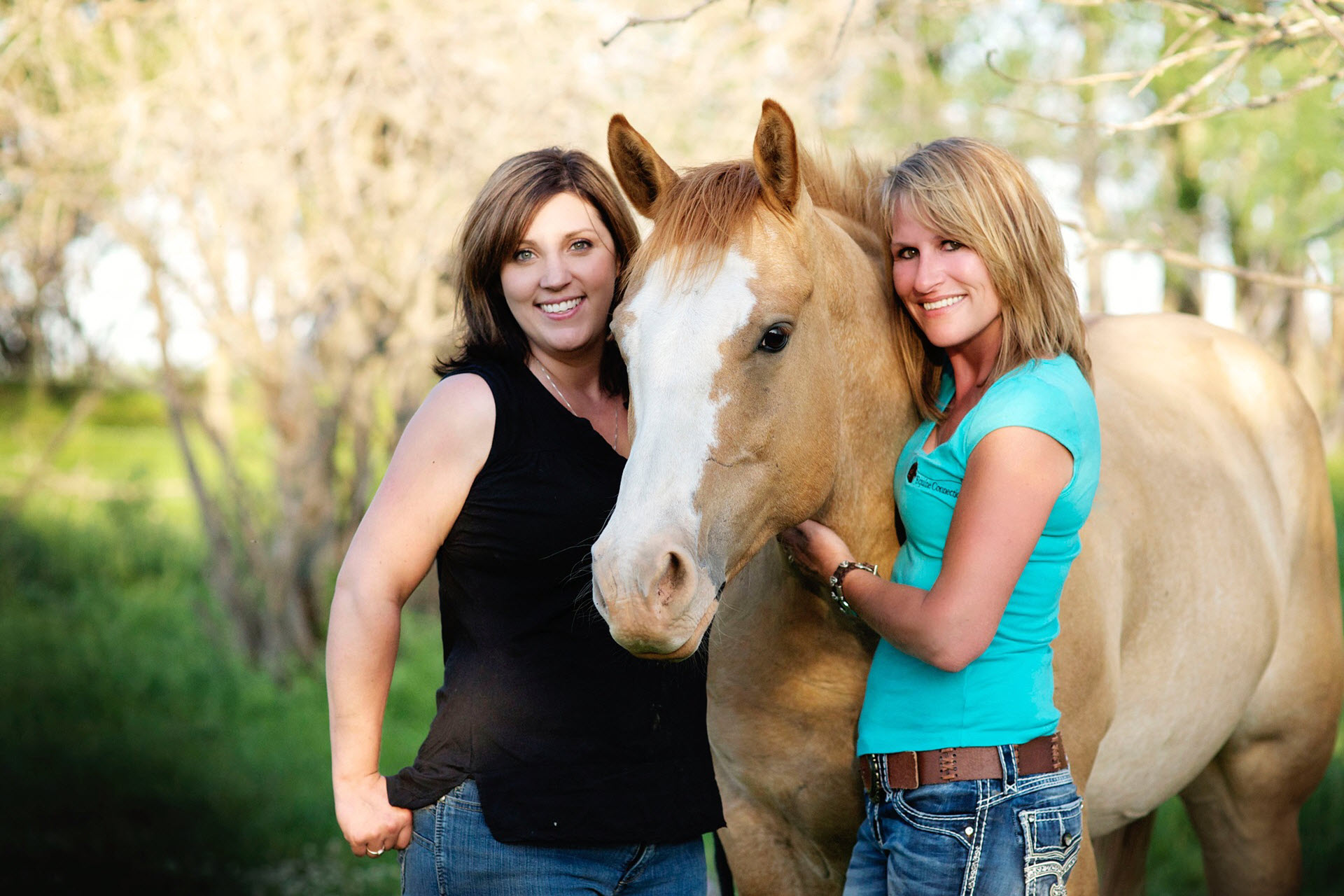 Equine Reiki Workshops 10